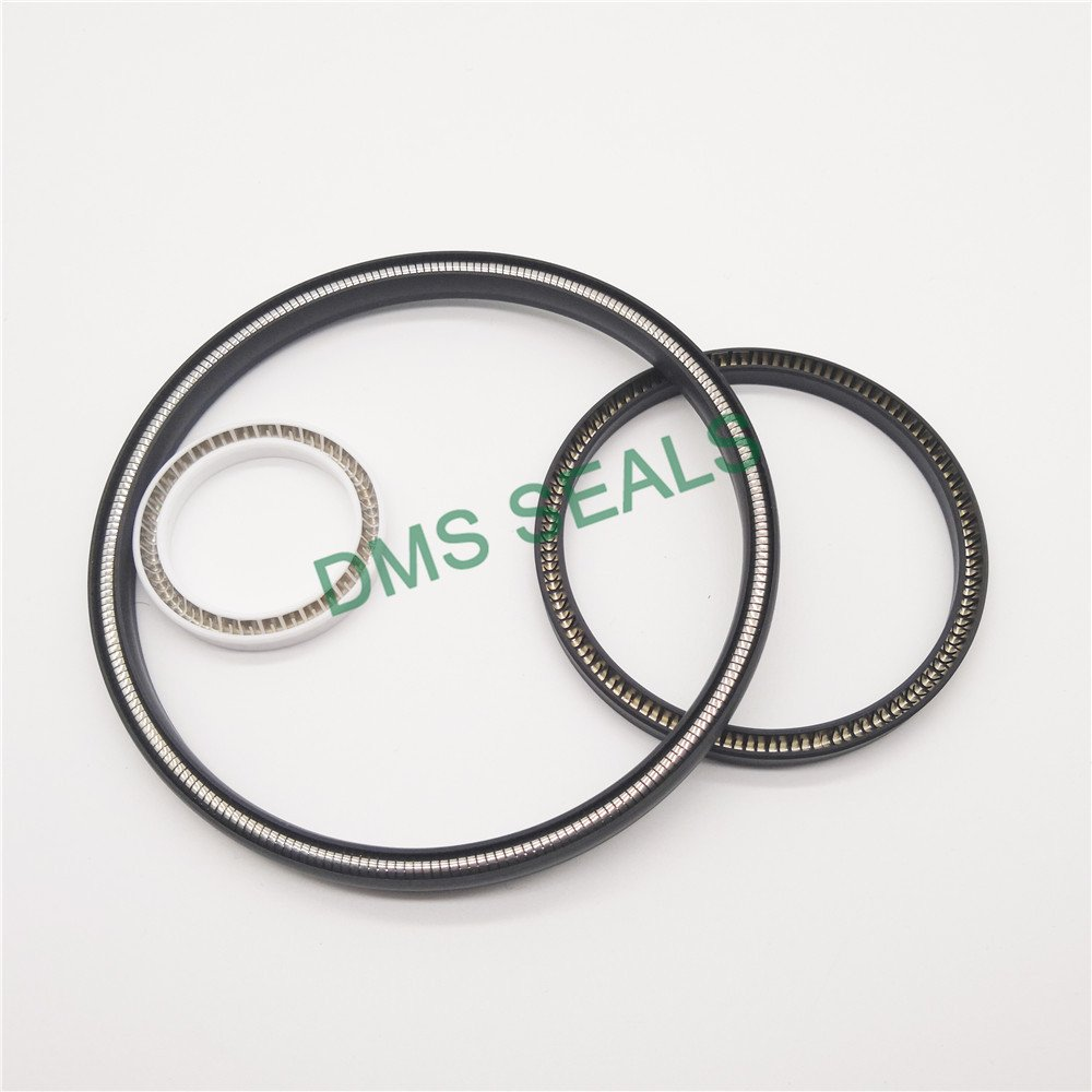DMS Seal Manufacturer-Find Spring Seals Spring Loaded Seal From Dms Seal Manufacturer-1