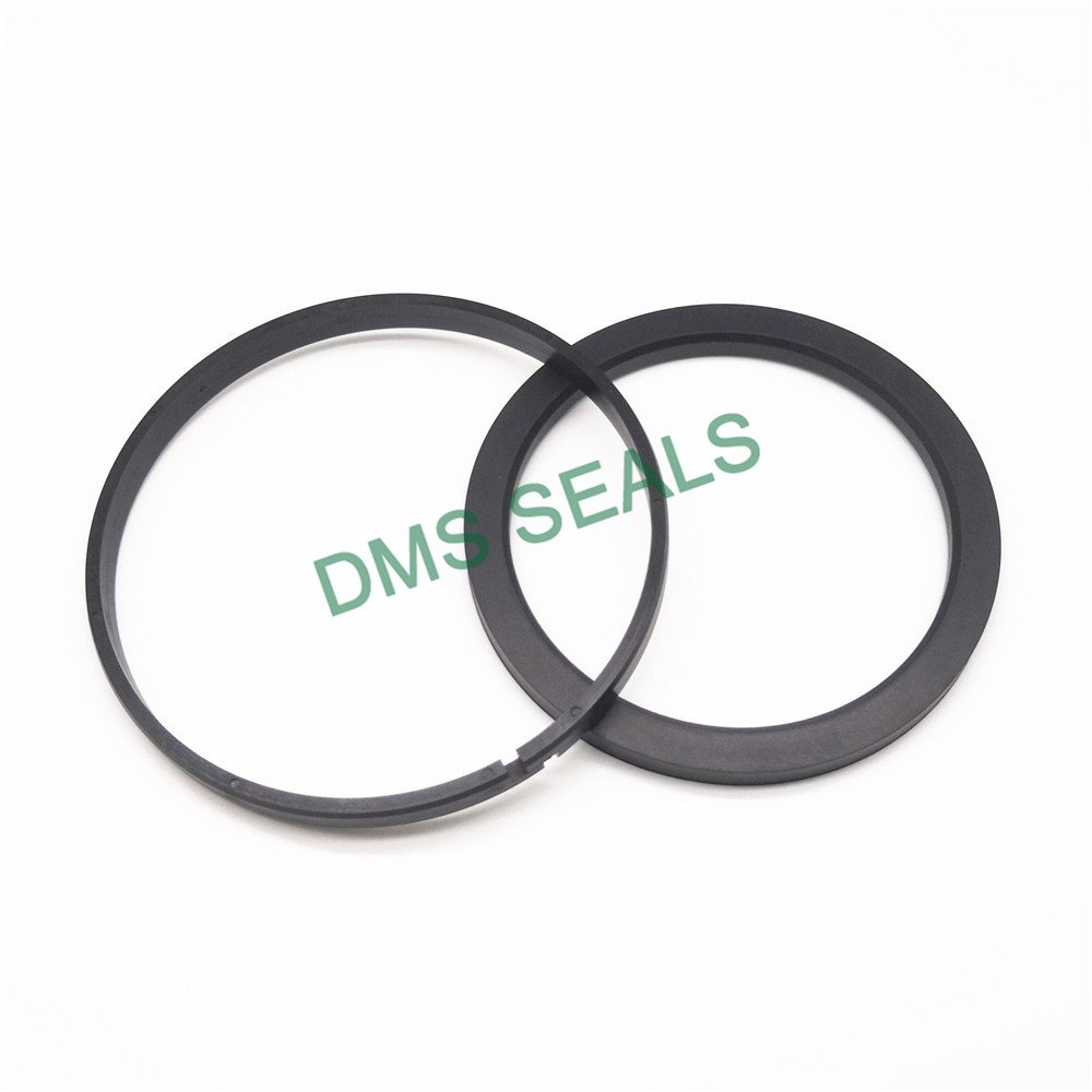 DMS Seal Manufacturer-Piston Seals Ok - Ptfe Hydraulic Piston Seal With Nbrfkm O-ring-2