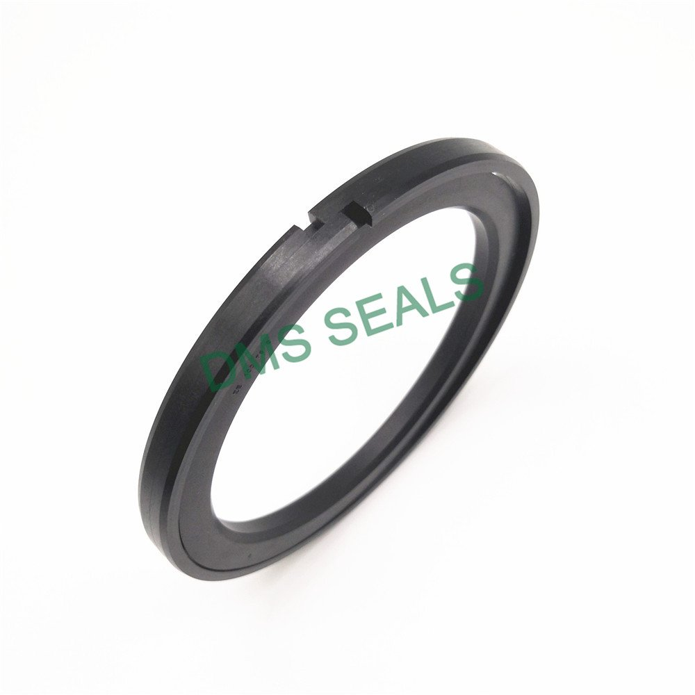 DMS Seal Manufacturer-Piston Seals Ok - Ptfe Hydraulic Piston Seal With Nbrfkm O-ring-1