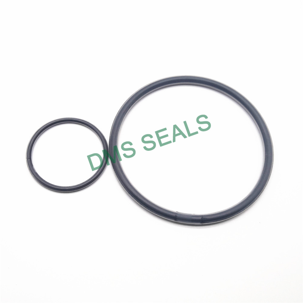 DMS Seal Manufacturer PTFE encapsulated viton O-Rings O-RINGS image2