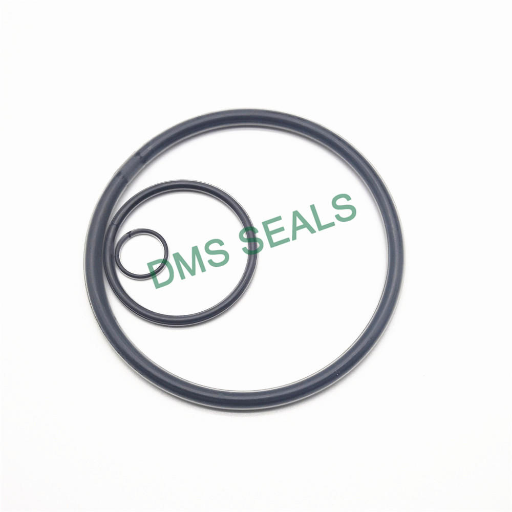 PTFE teflon FEP PFA encapsulated viton O-Ring