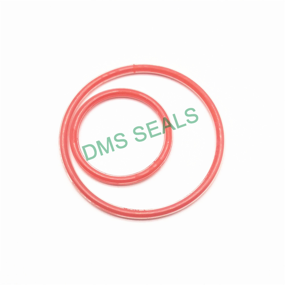 o ring seal manufacturer in highly aggressive chemical processing DMS Seal Manufacturer-2