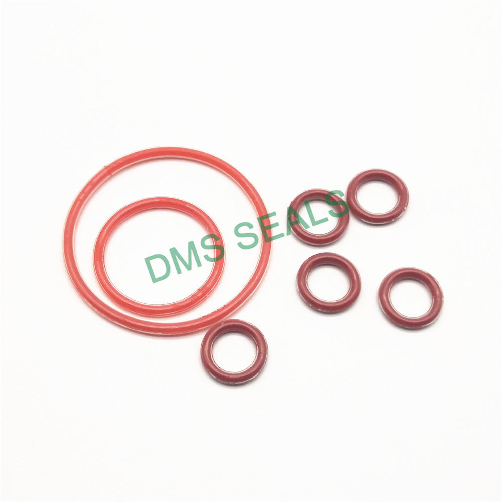 PTFE teflon FEP PFA encapsulated silicone O-Ring