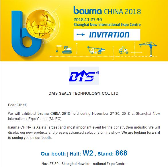 DMS Seal Manufacturer-2018 Bauma China