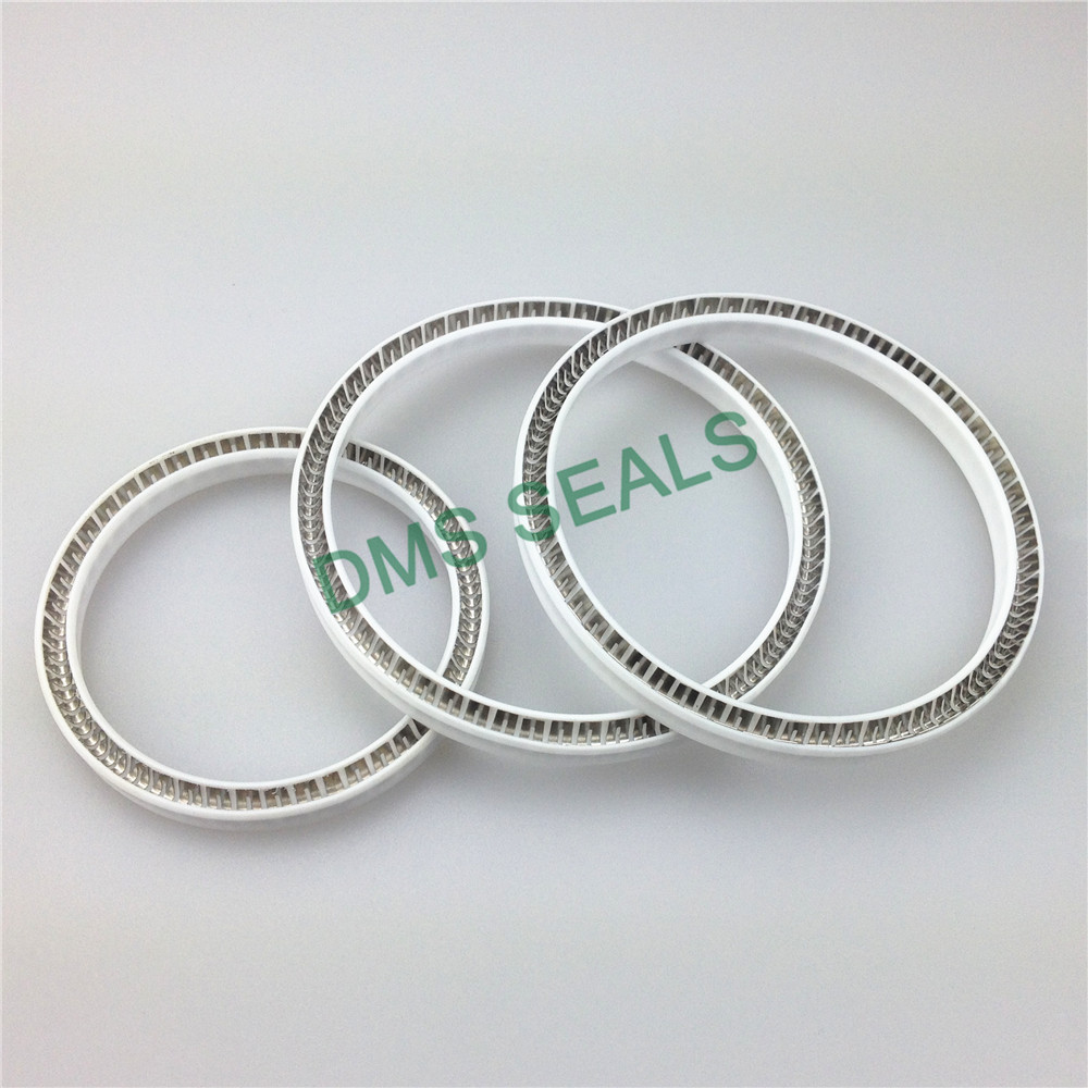 news-DMS Seal Manufacturer-img