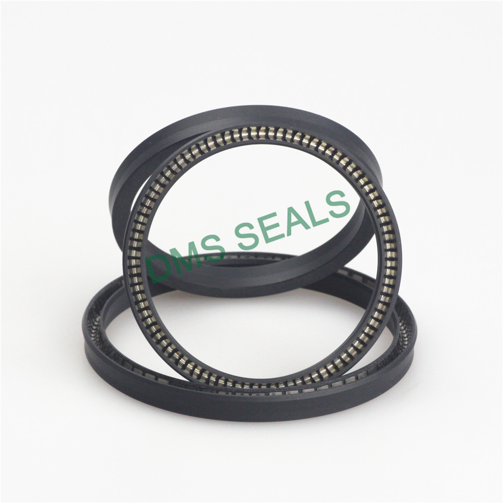 DMS Seal Manufacturer-Find Spring Seals Spring Loaded Seal From Dms Seal Manufacturer