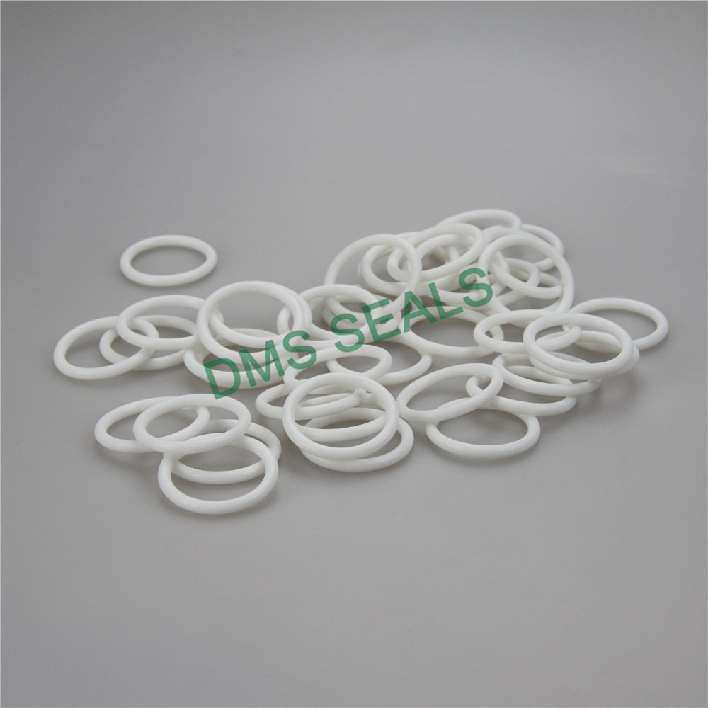 white o ring seal manufacturer in highly aggressive chemical processing-DMS Seal Manufacturer-img