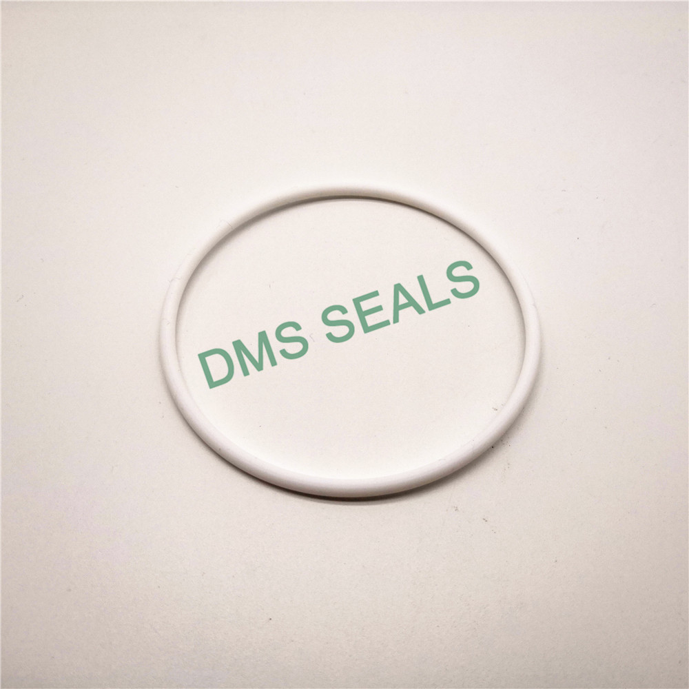 DMS Seal Manufacturer rubber round rubber ring Suppliers in highly aggressive chemical processing-1