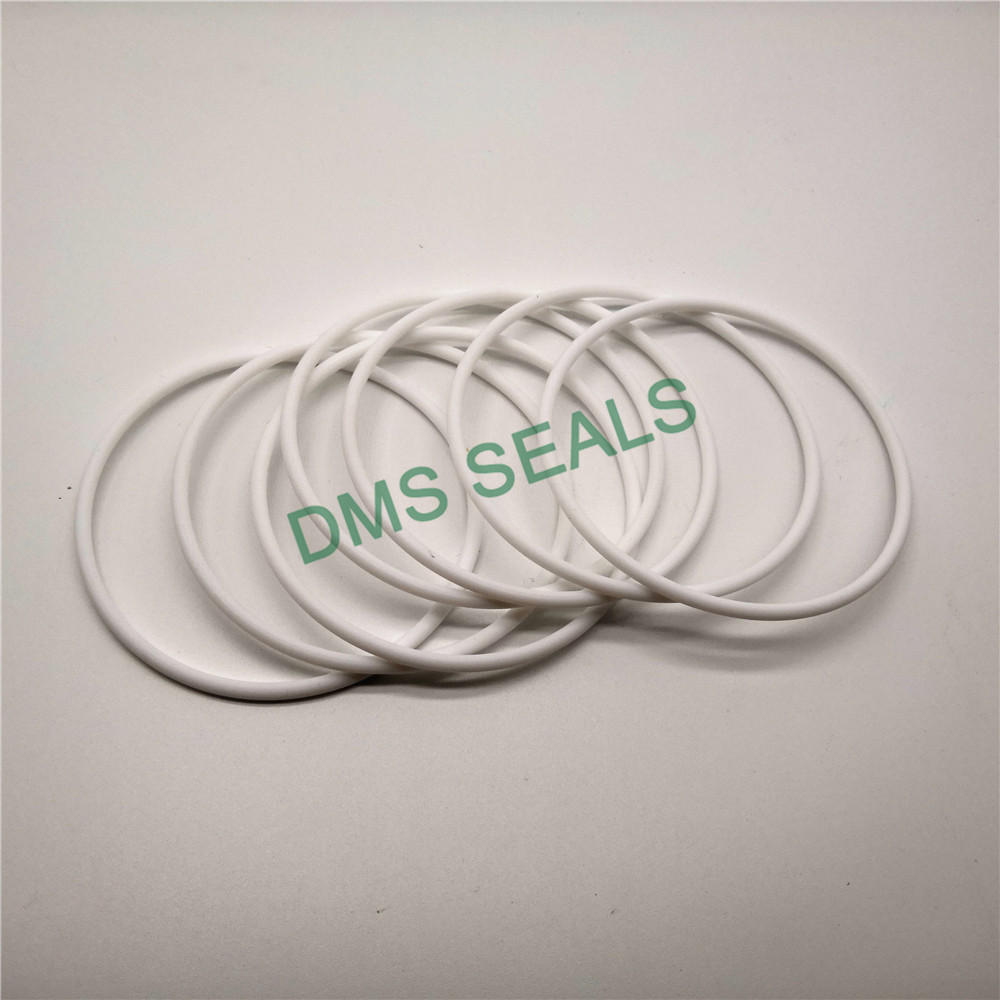 application-O-ring Seal-Oil Seal Manufacturer-DMS Seal Manufacturer-img