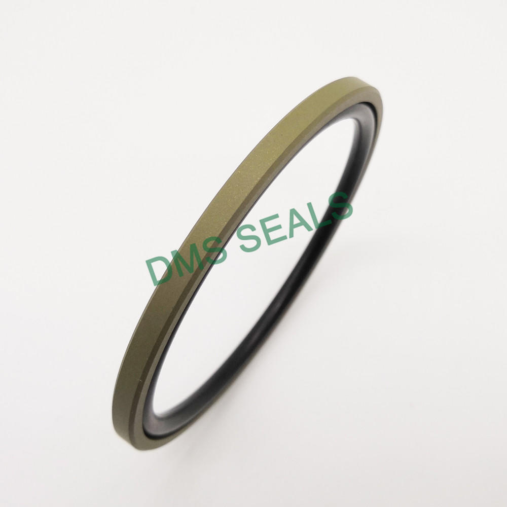 GSF - Bronze PTFE Hydraulic Piston Seal glyd ring with NBR/FKM O-Ring