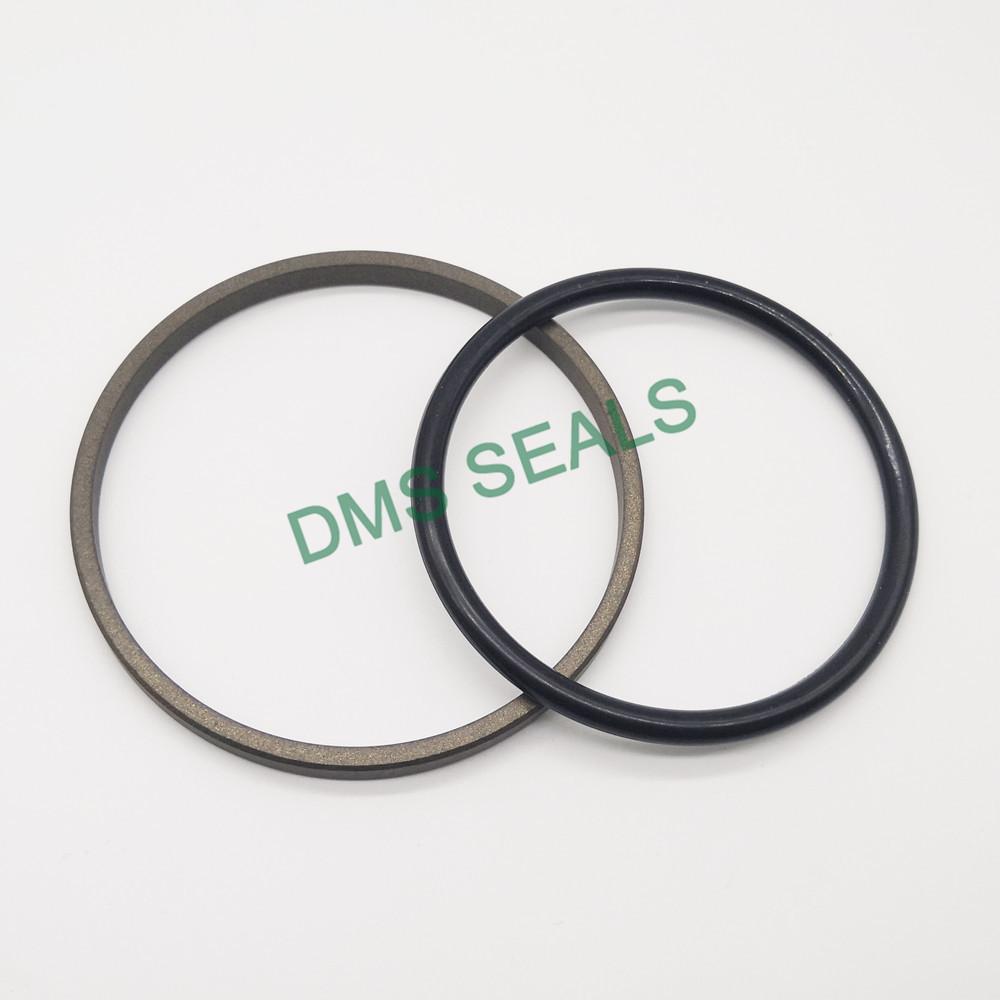 DMS Seal Manufacturer-o-ring seal | Piston Seals | DMS Seal Manufacturer-1