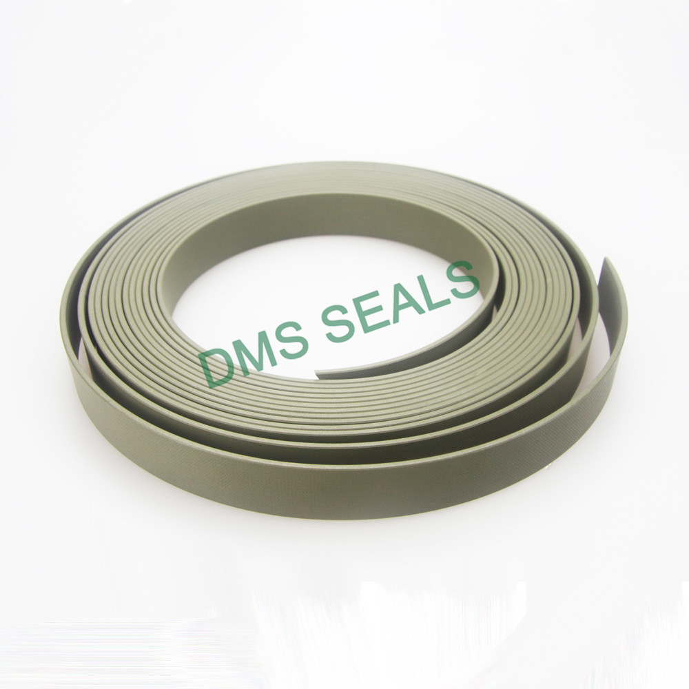 cylinder oil seal ring wear ring as the guide sleeve DMS Seal Manufacturer-3