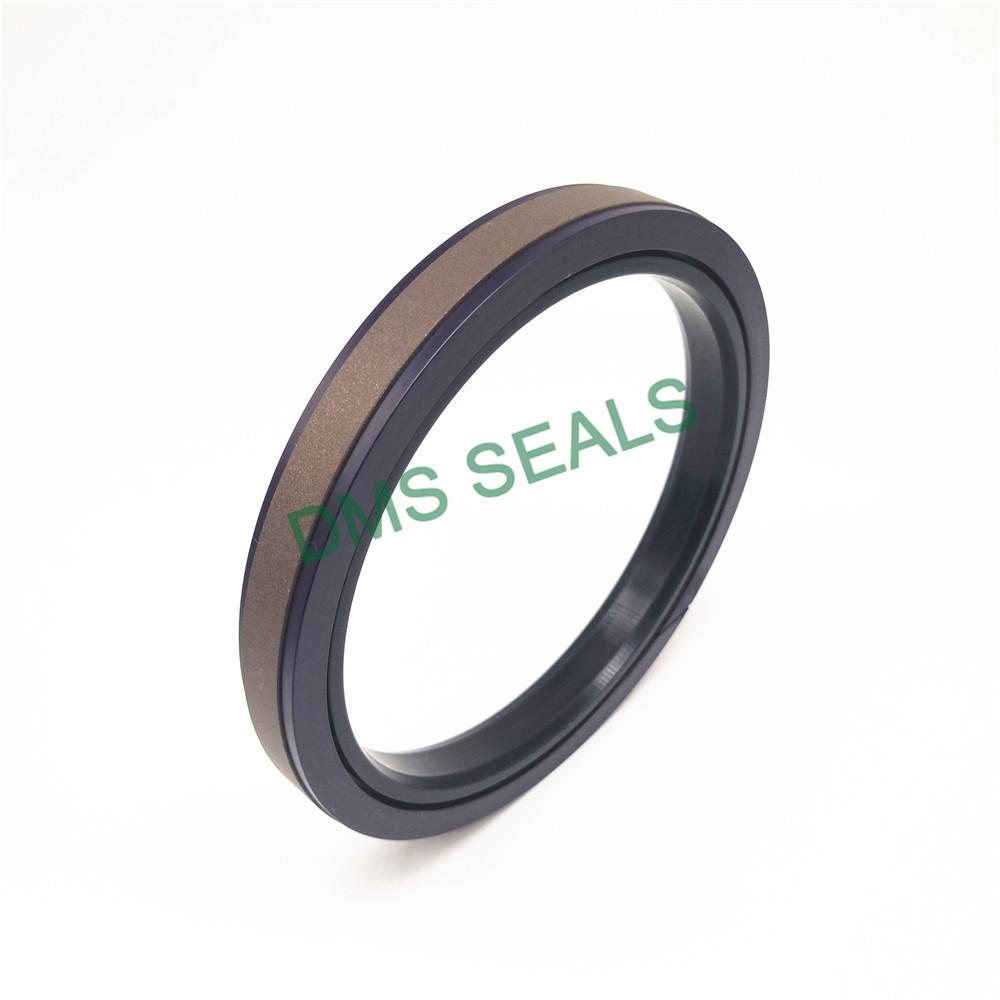 DMS Seal Manufacturer-piston seals | Piston Seals | DMS Seal Manufacturer-2