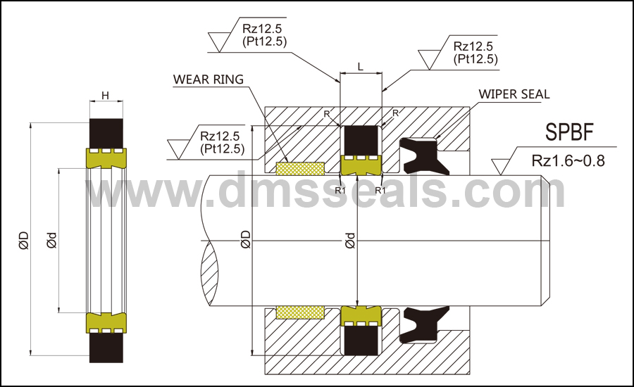 DMS Seal Manufacturer-Hydraulic Rod Seal | Push Rod Seal | Hydraulic Seals