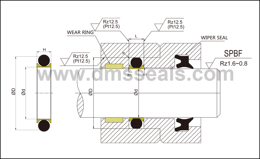 DMS Seal Manufacturer-Hydraulic Rod Seal | Shaft Oil Seals | O-ring Seal