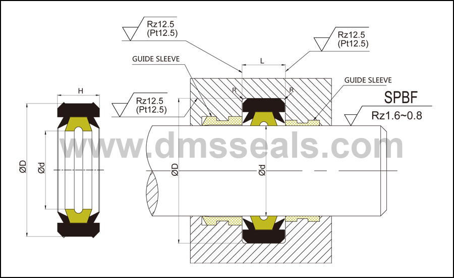 DMS Seal Manufacturer-Hydraulic Rod Seal | Push Rod Seal | Oil Seal Ring