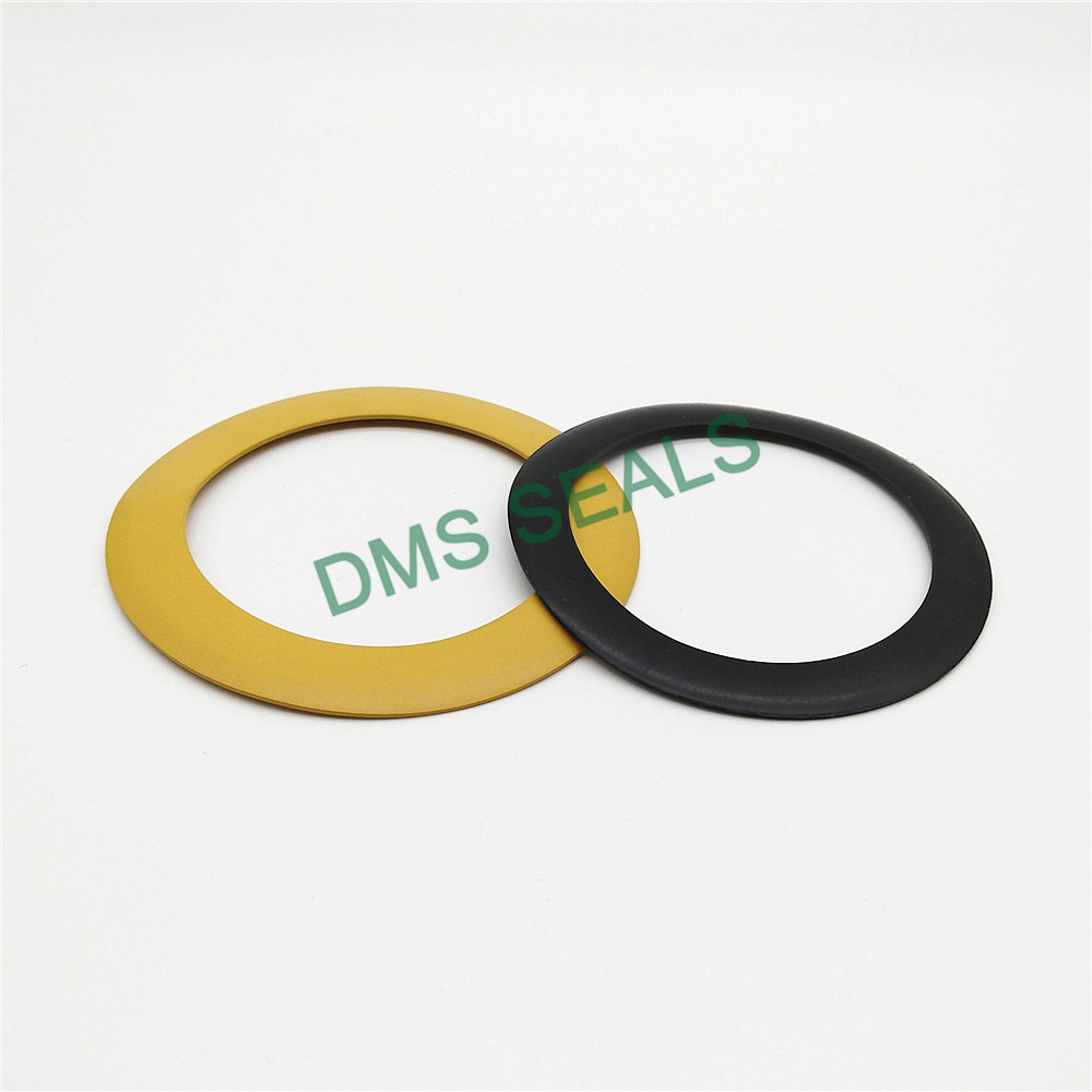 news-DMS Seals-DMS Seal Manufacturer custom gaskets torque for liquefied gas-img