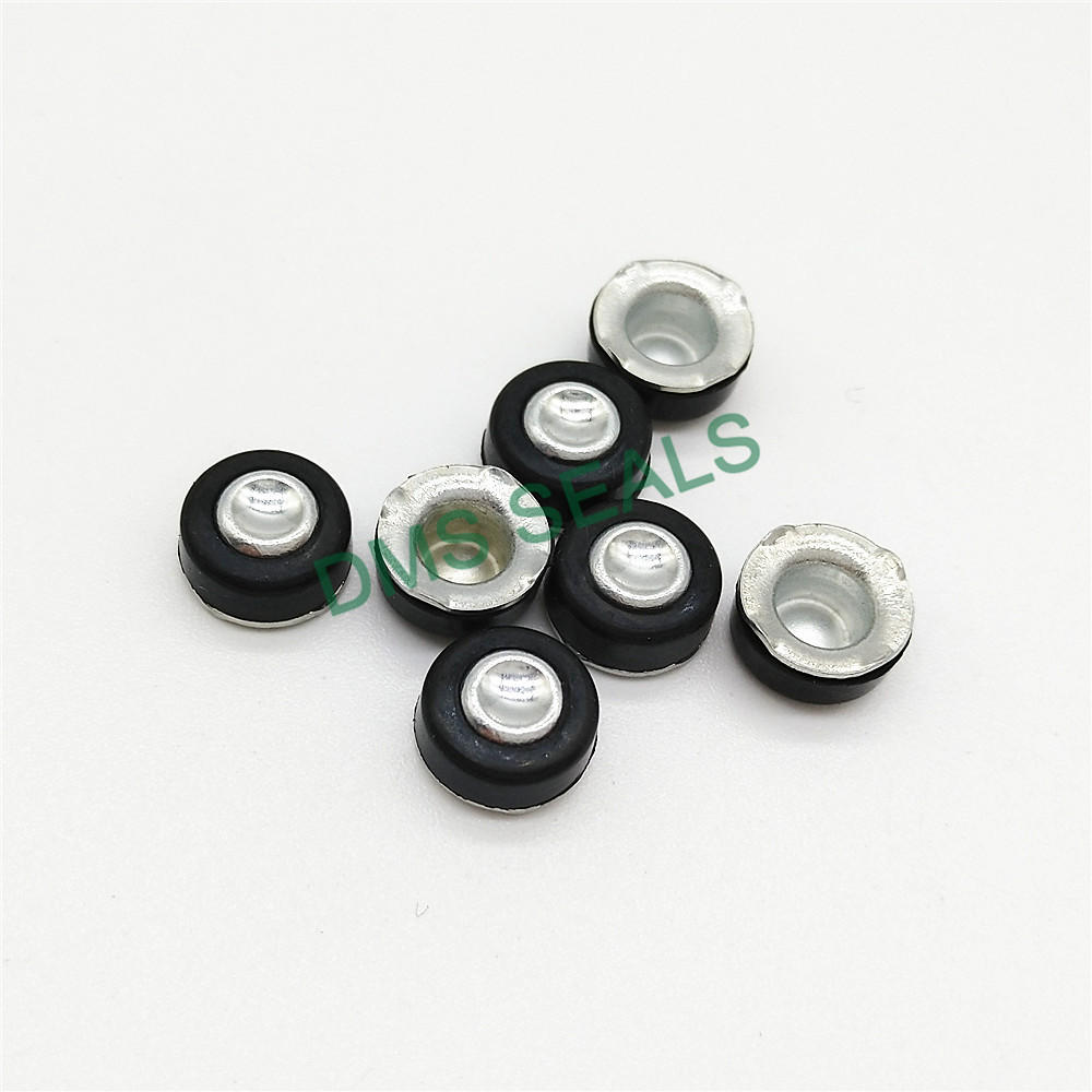 Metal and rubber plug seal for air bottle