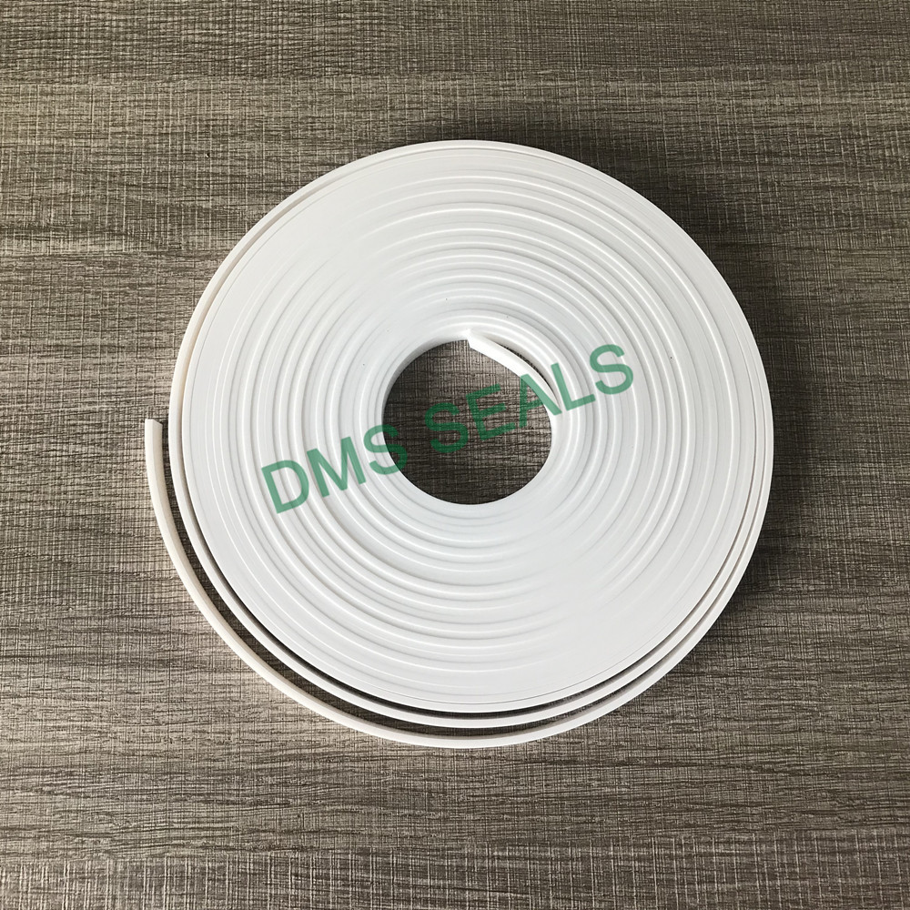 DMS Seal Manufacturer ptfe oil seal manufacturer with nbr or fkm o ring as the guide sleeve-3