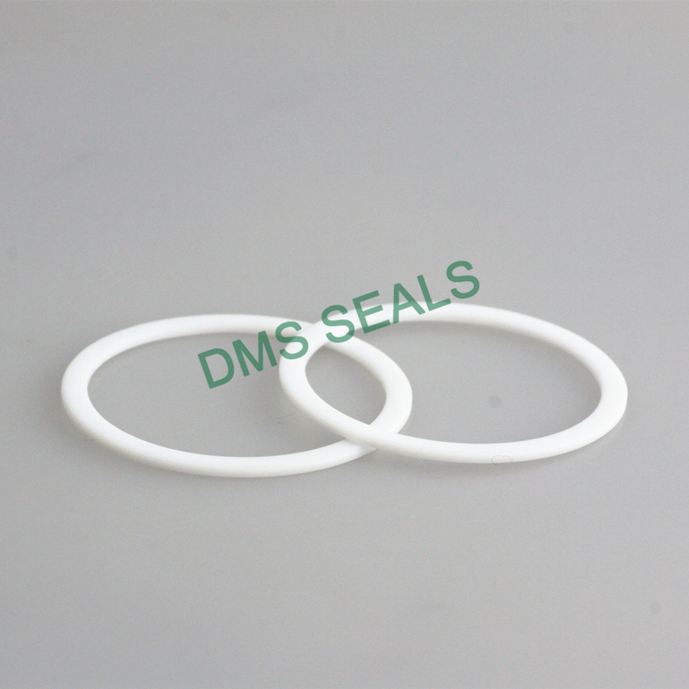 DMS Seal Manufacturer-Virgin PTFE Back-Up Ring