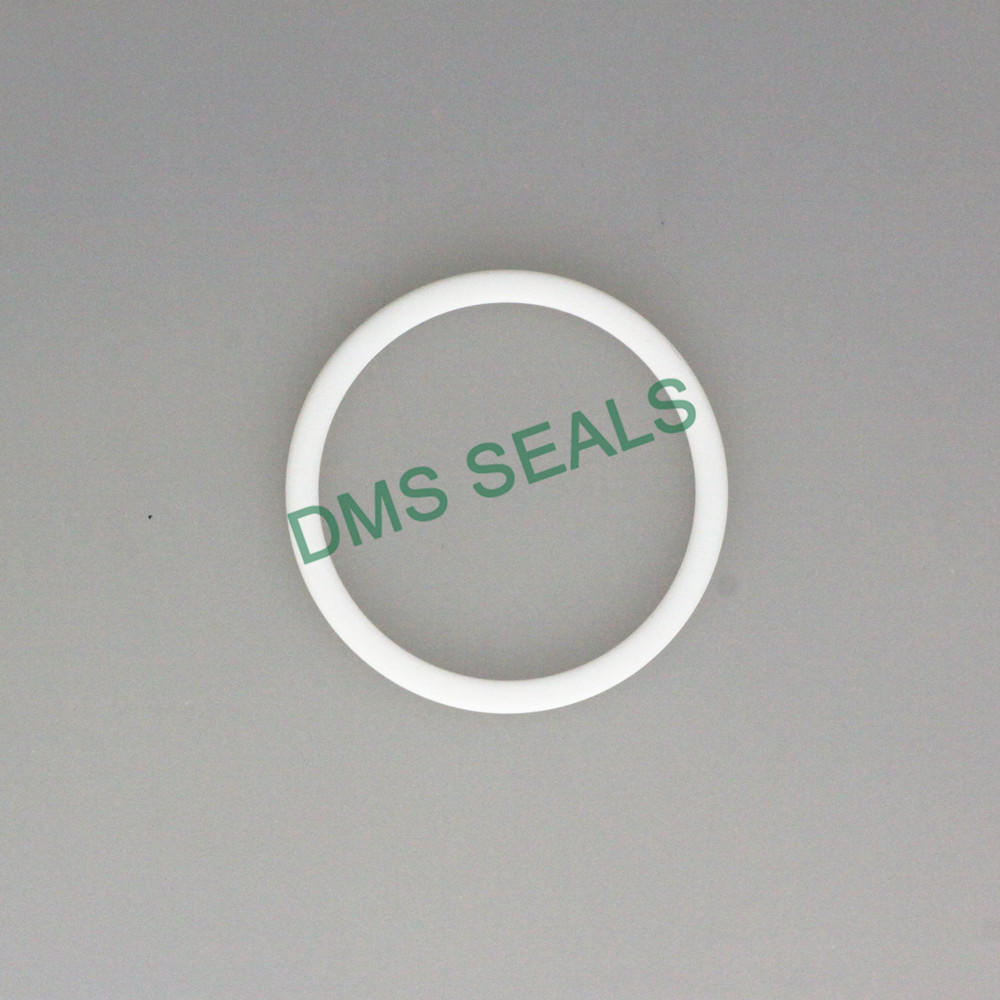 Virgin PTFE Back-Up Ring