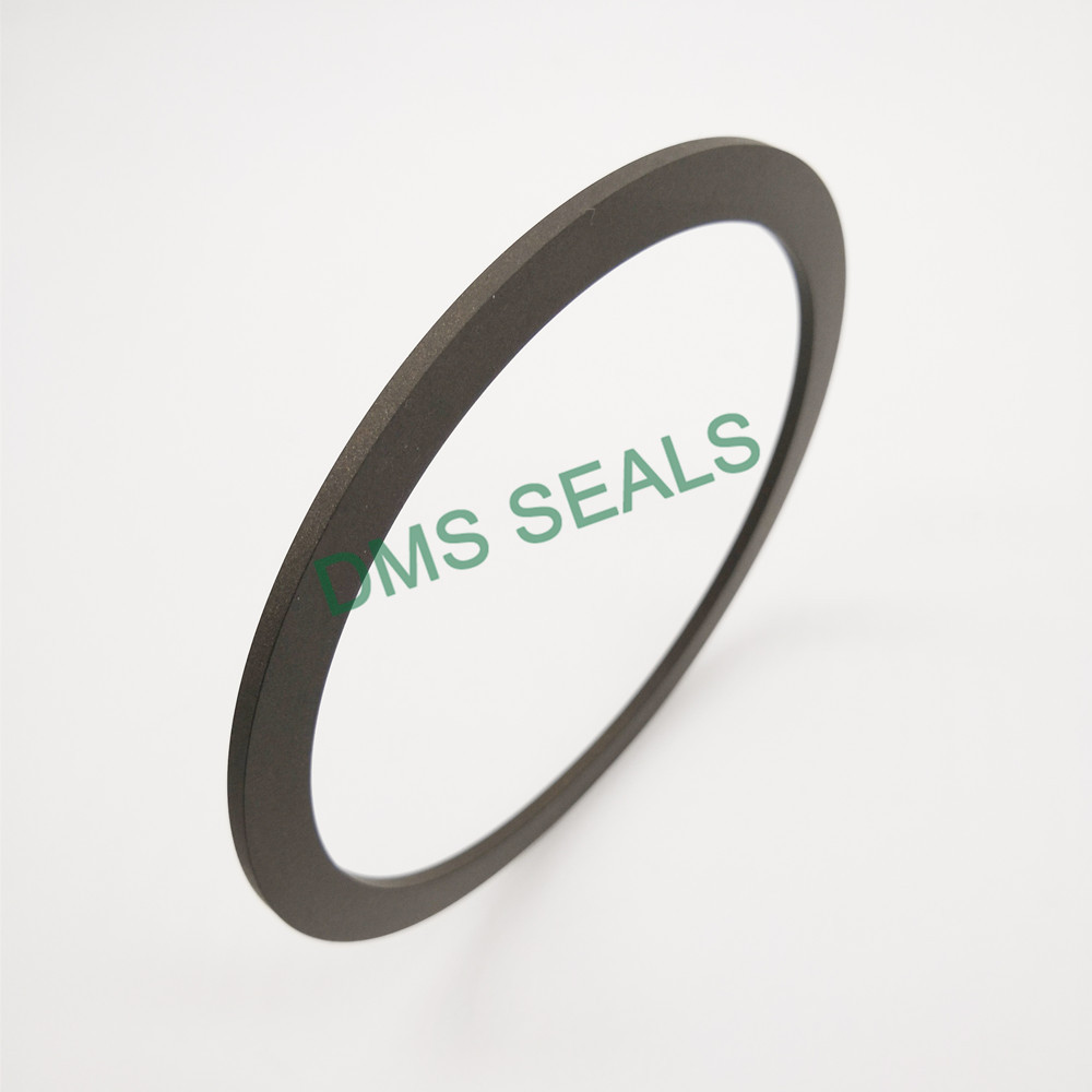 DMS Seal Manufacturer-BRT Bronze filled PTFE Back-Up Ring-1
