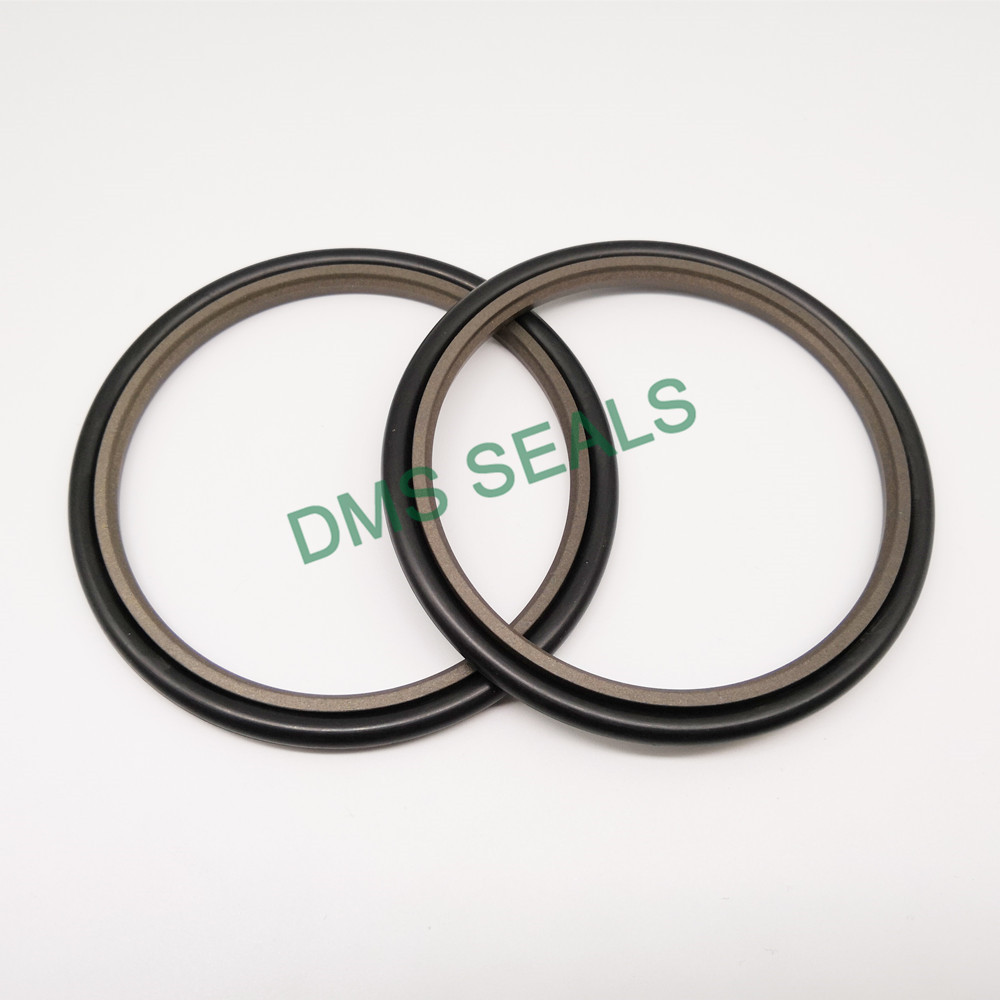 DMS Seal Manufacturer compact piston o ring-3