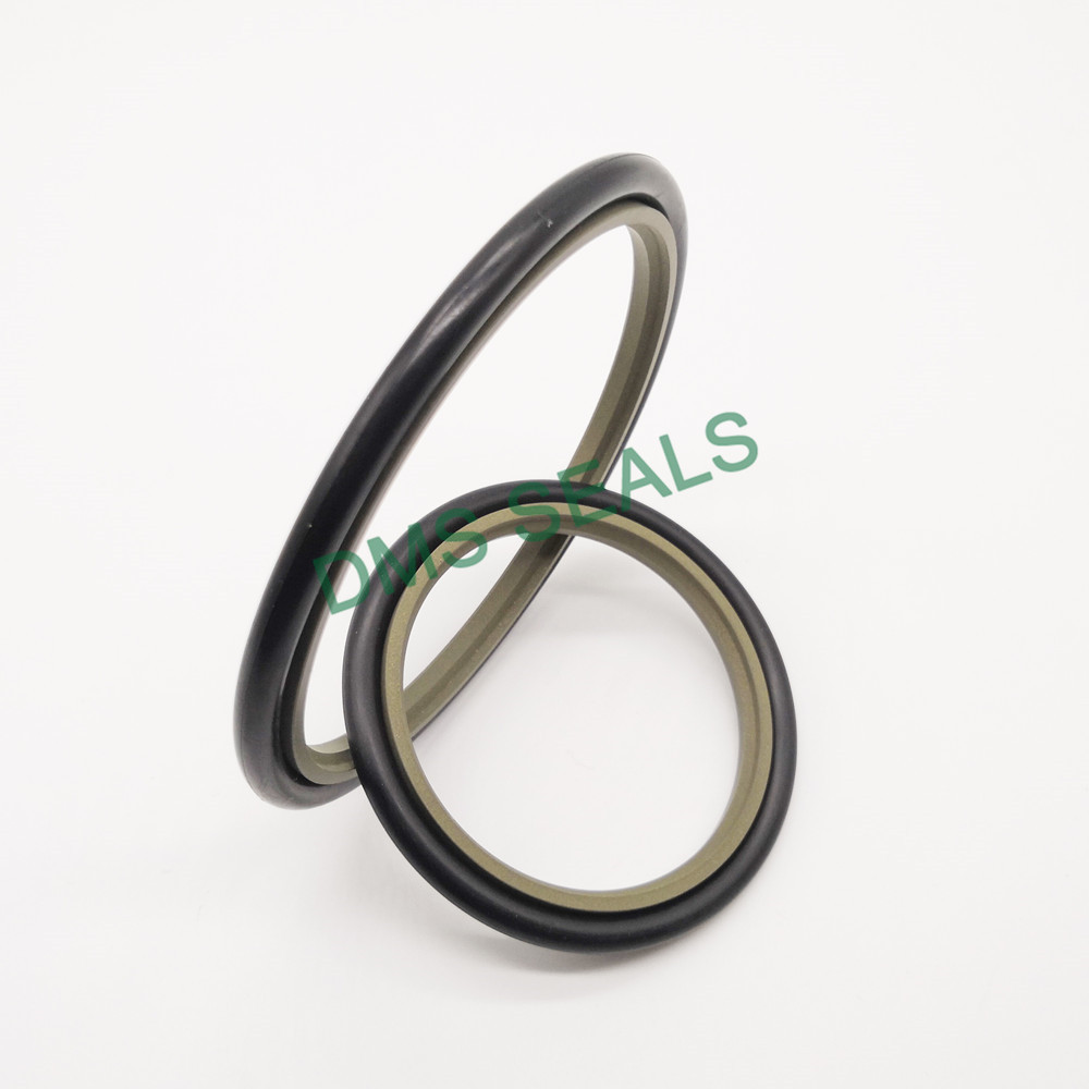 DMS Seal Manufacturer-hydraulic cylinder piston seals ,hydraulic seals catalogue | DMS Seal Manufact-1