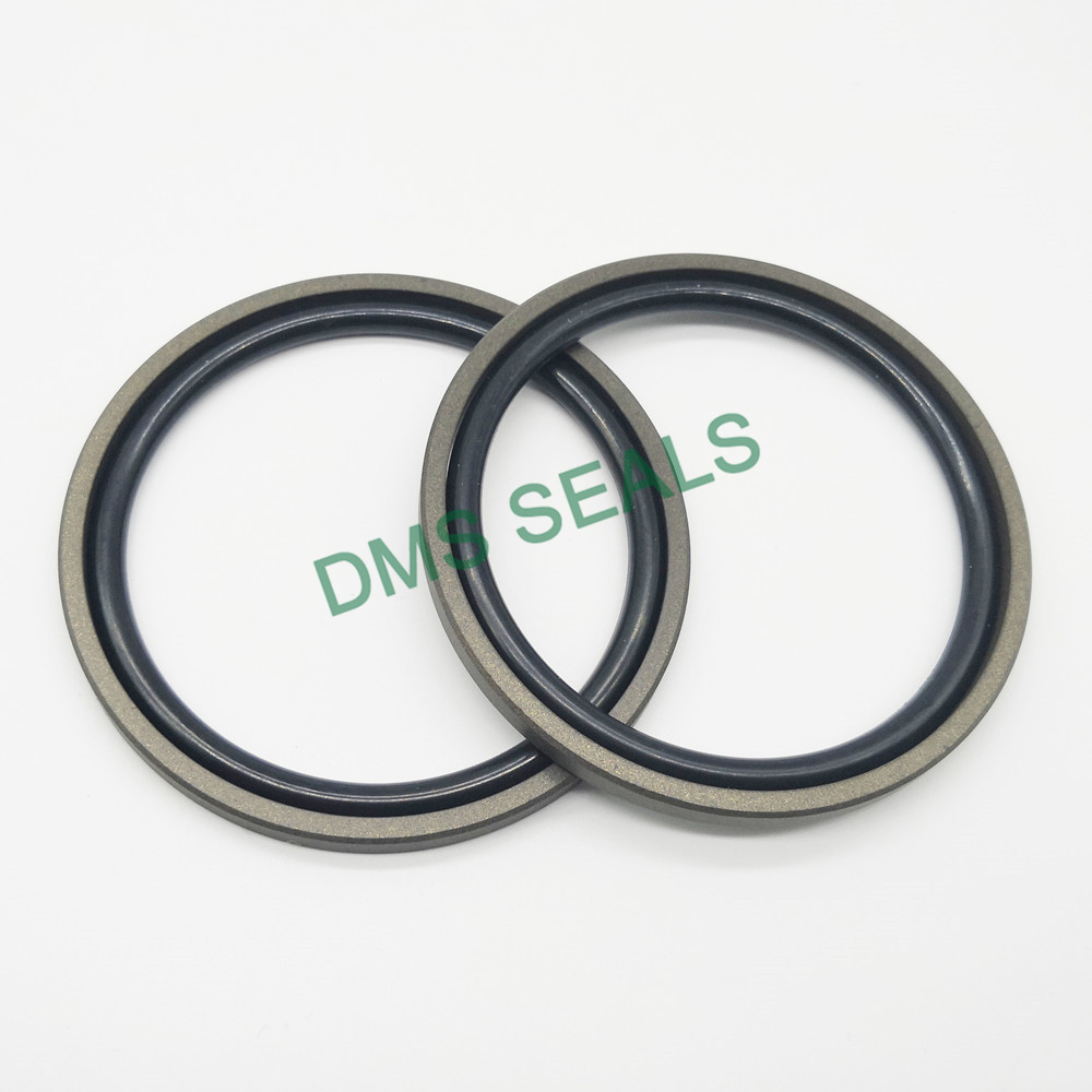 DMS Seal Manufacturer-piston o ring | Others | DMS Seal Manufacturer