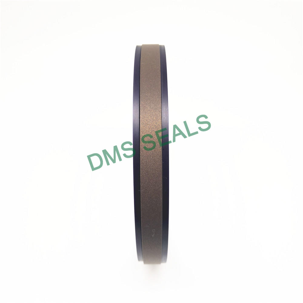 Hydraulic Compact Piston Seal SPGW