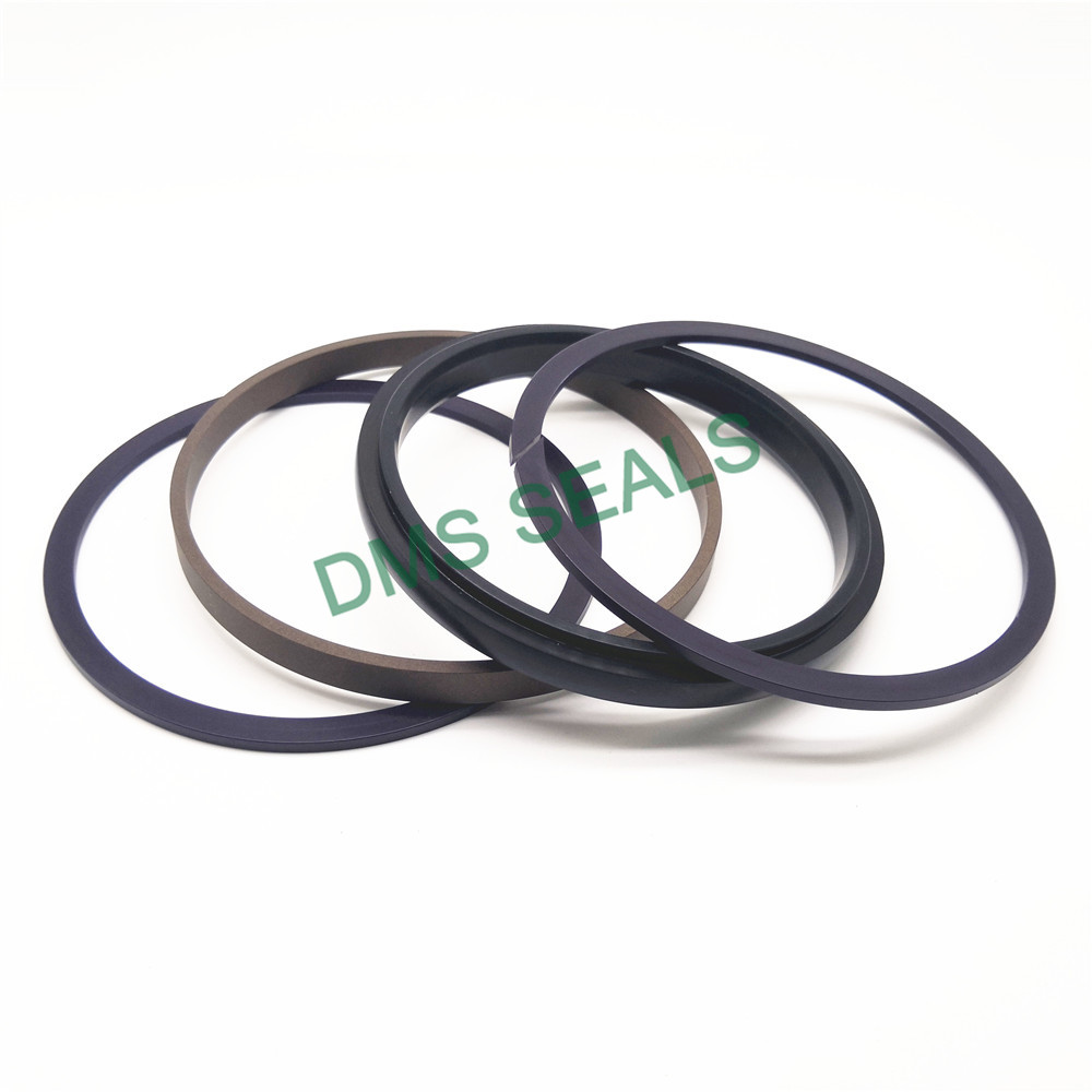 application-bronze filled piston rings by bore size supplier for larger piston clearance-DMS Seals-i