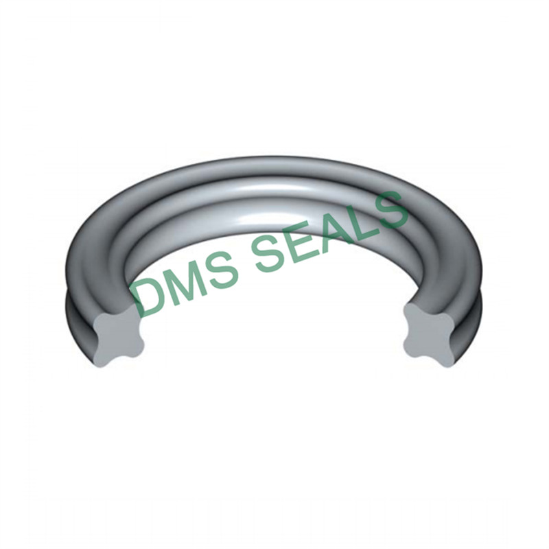 DMS Seal Manufacturer o-ring seal in highly aggressive chemical processing-1