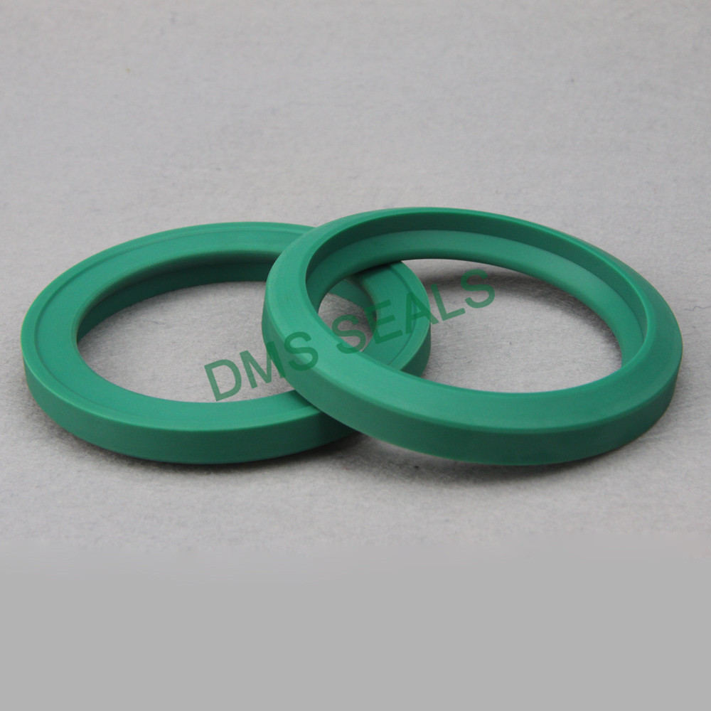 DMS Seal Manufacturer hydraulic oil seal supplier for piston and hydraulic cylinder-1