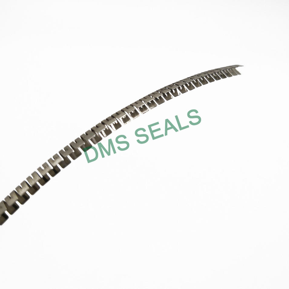 Stainless Steel Spring for Spring Energized Seal Variseal FSKR