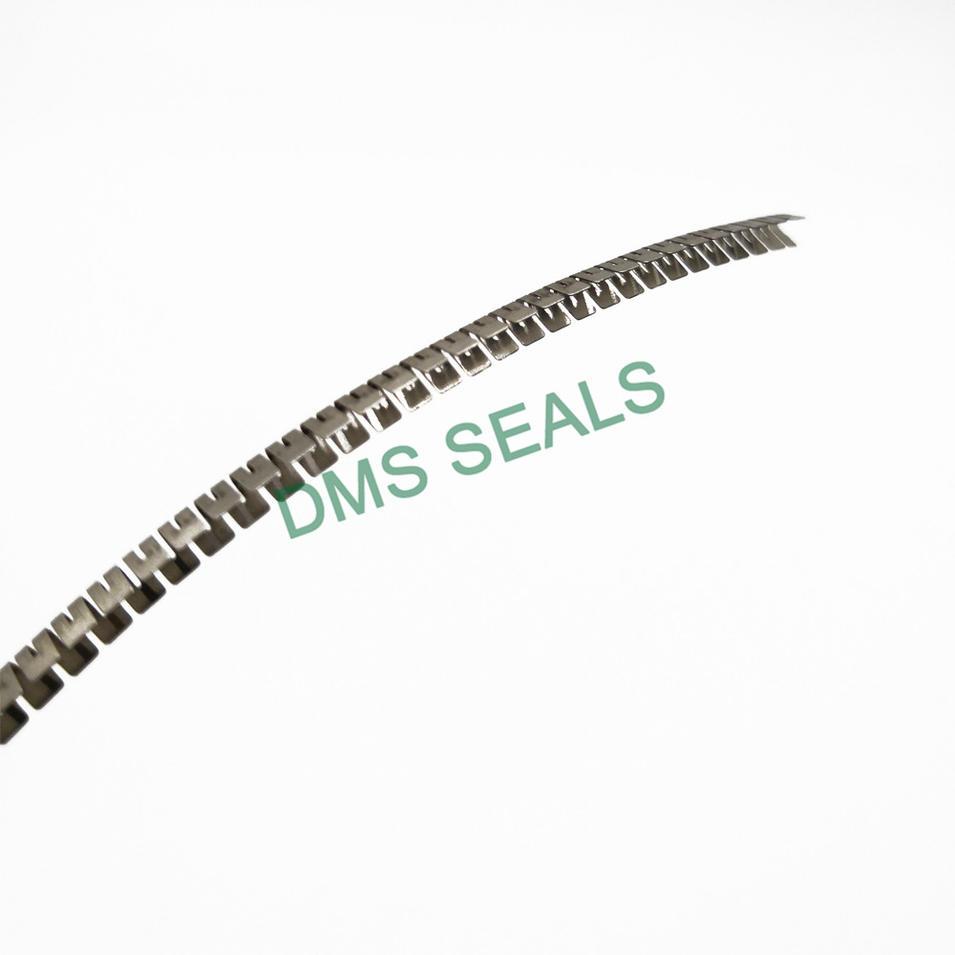 Stainless Steel Spring for Spring Energized Seal Variseal FSKR