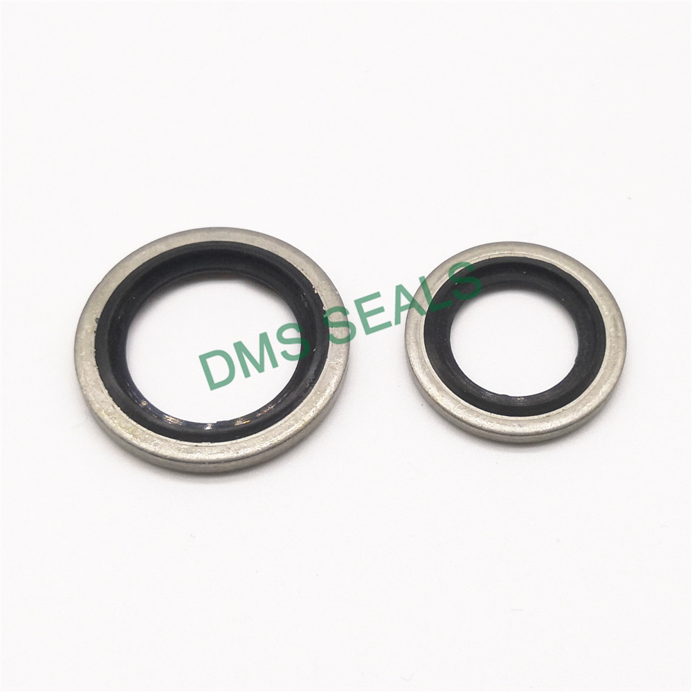 DMS Seal Manufacturer bonded sealing washer dimensions factory for threaded pipe fittings and plug sealing-2
