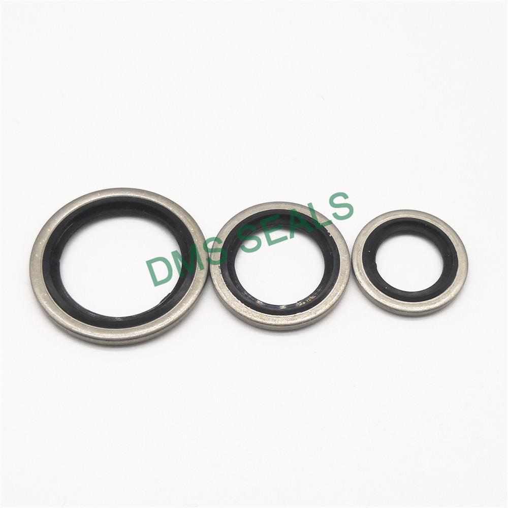 High Temperature Resistant SS316 Combination Gasket Bonded Seal