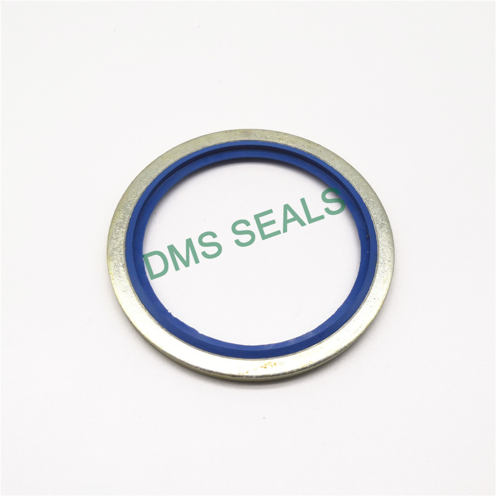 DMS Seal Manufacturer bonded sealing washers stainless steel manufacturers for threaded pipe fittings and plug sealing-1