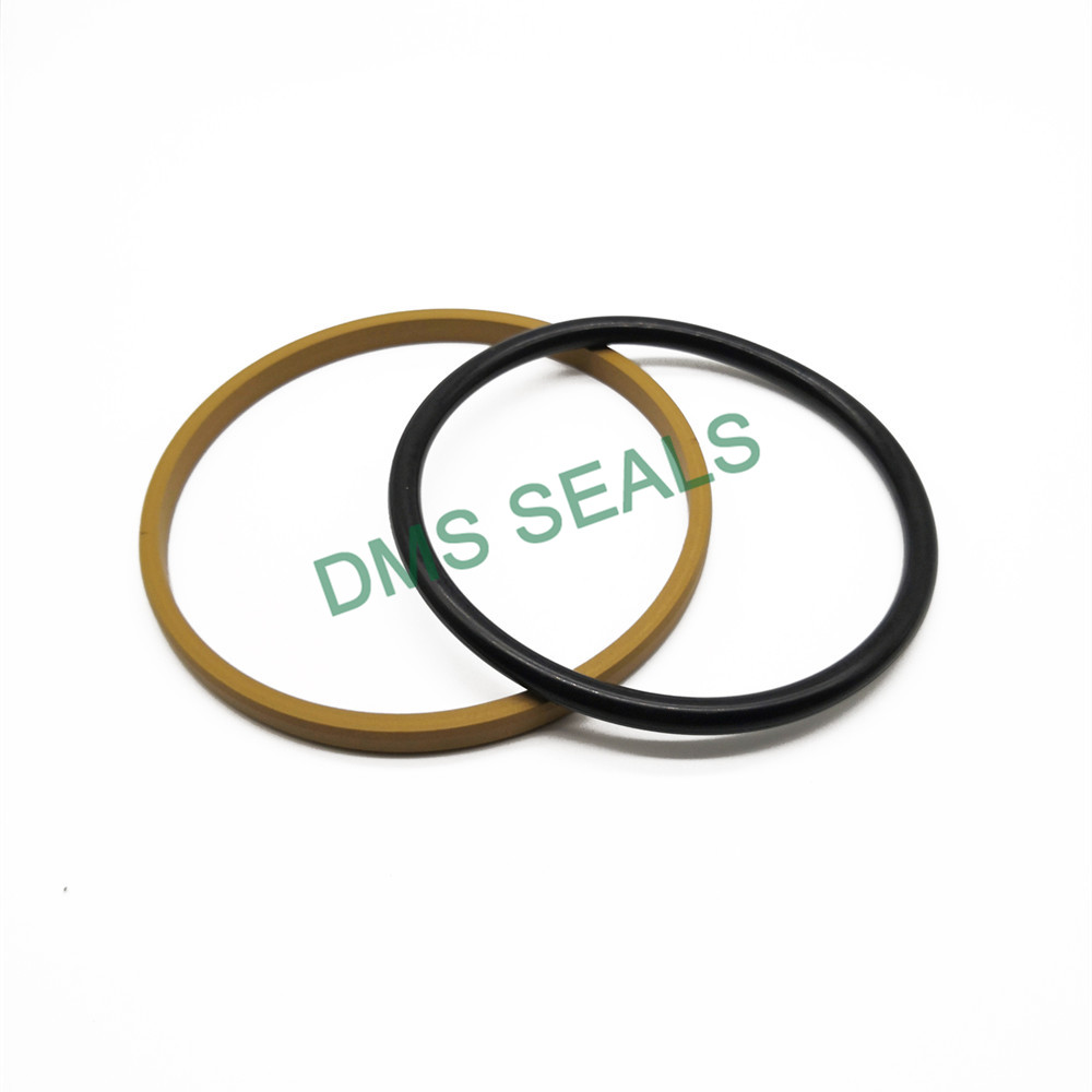 product-DMS Seal Manufacturer Wholesale hydraulic cylinder shaft seals with nbr or fkm o ring for li