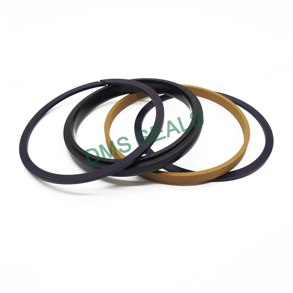 DMS Seal Manufacturer Best hydraulic seal kits suppliers glyd ring for light and medium hydraulic systems-3