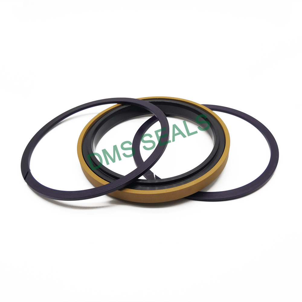 application-DMS Seal Manufacturer New piston seals company for light and medium hydraulic systems-DM