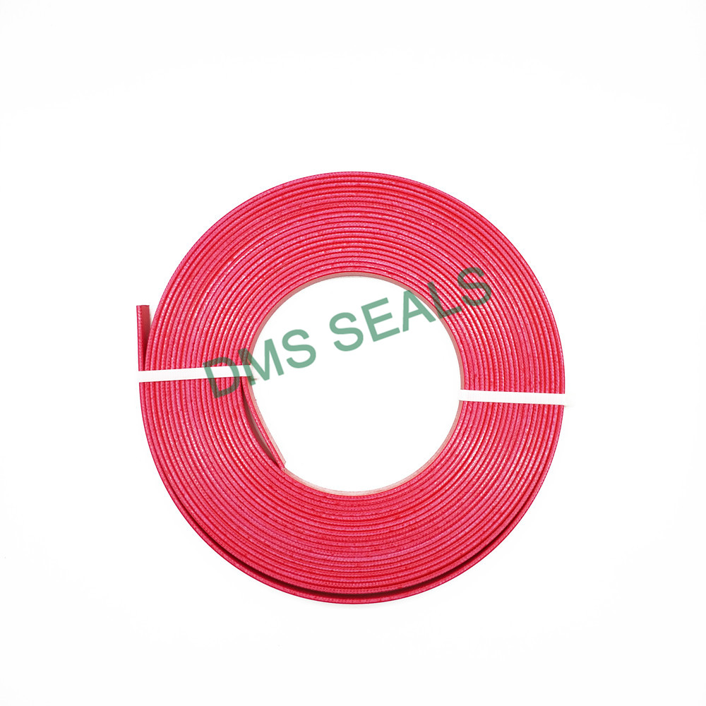 DMS Seal Manufacturer Custom rubber seal design guide strip for sale-1