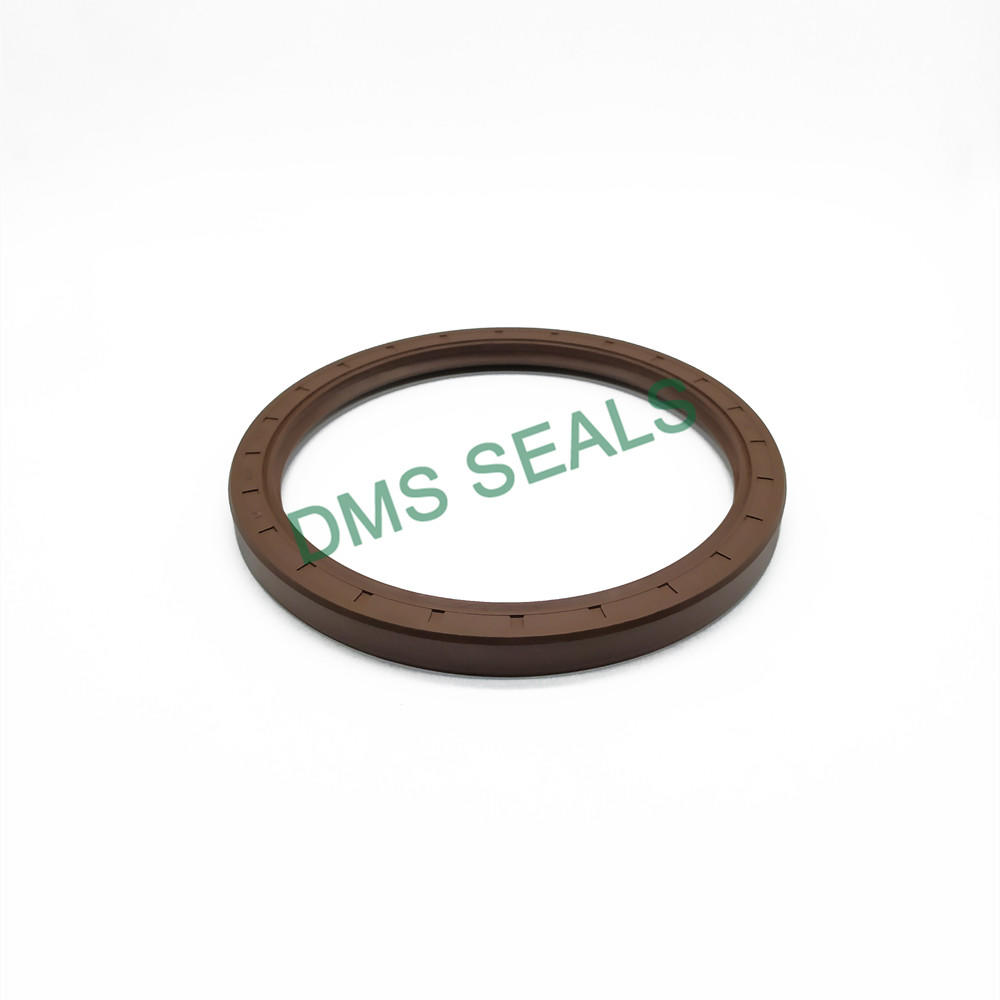 TC Type FKM Viton High Temperature Resistance Skeleton Oil Seal