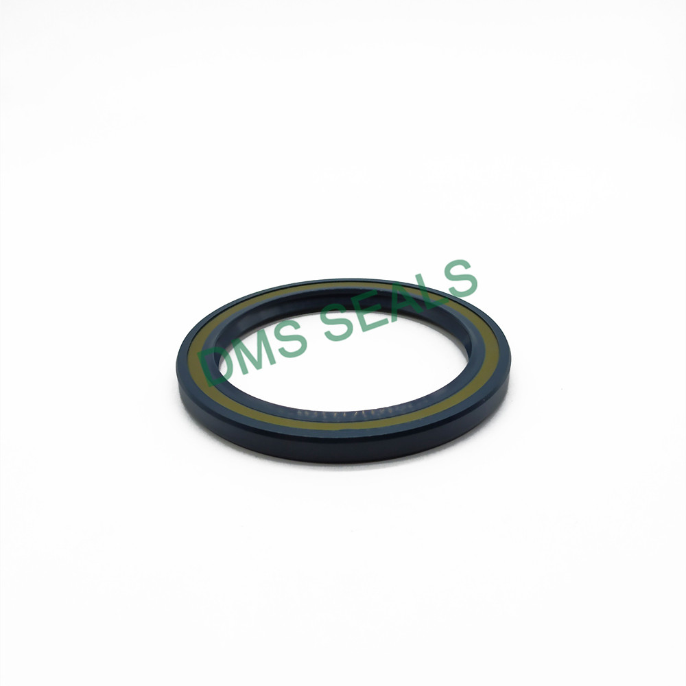 DMS Seal Manufacturer professional oil seal cost with a rubber coating for sale-1
