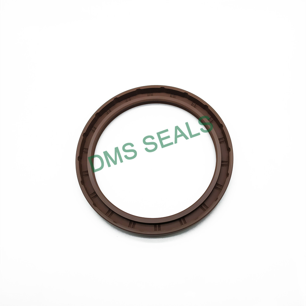 news-DMS Seals-DMS Seal Manufacturer o ring production with integrated spring for sale-img