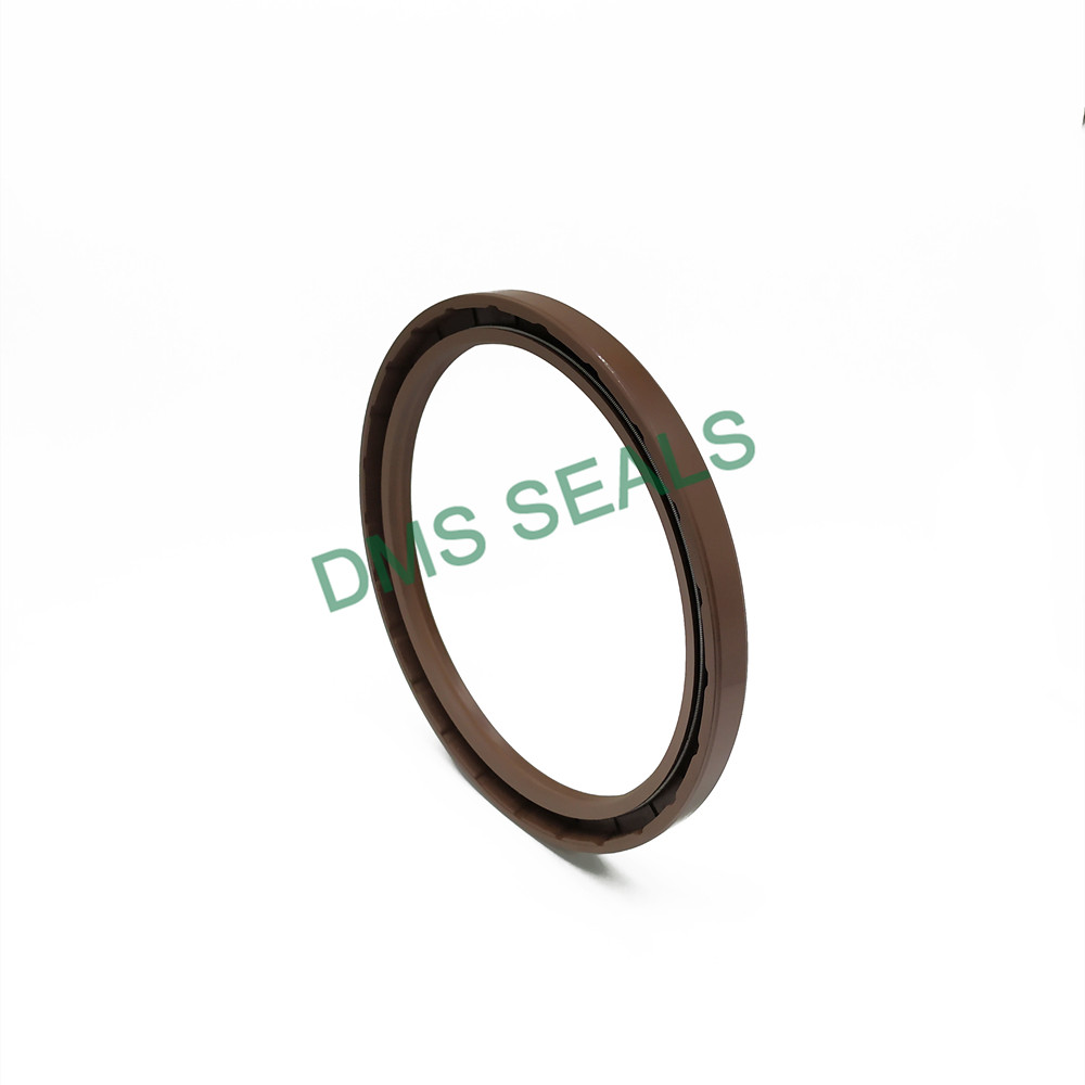 news-DMS Seal Manufacturer o ring production with integrated spring for sale-DMS Seals-img