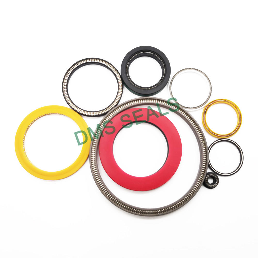 Wear-resistant and Durable Spring Energized Seal