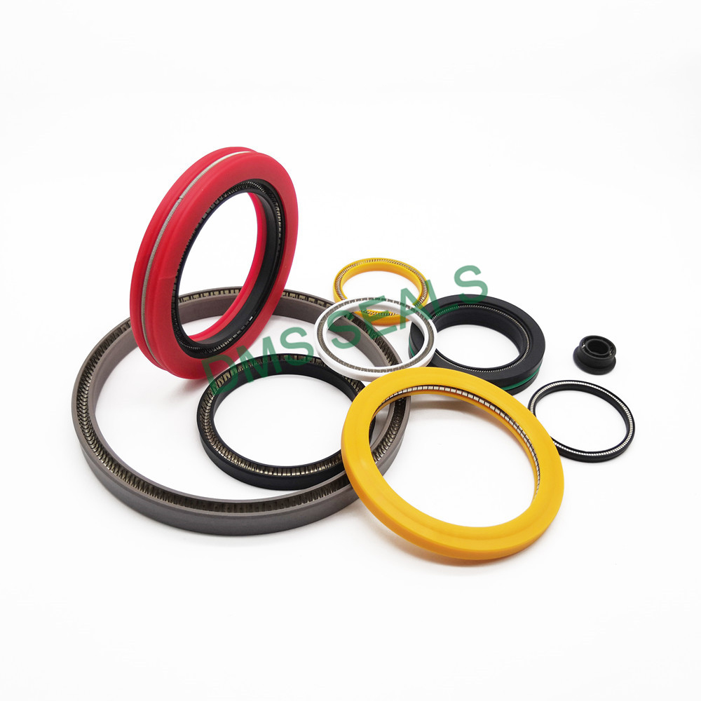 news-DMS Seal Manufacturer Best multi spring seal Suppliers for reciprocating piston rod or piston s