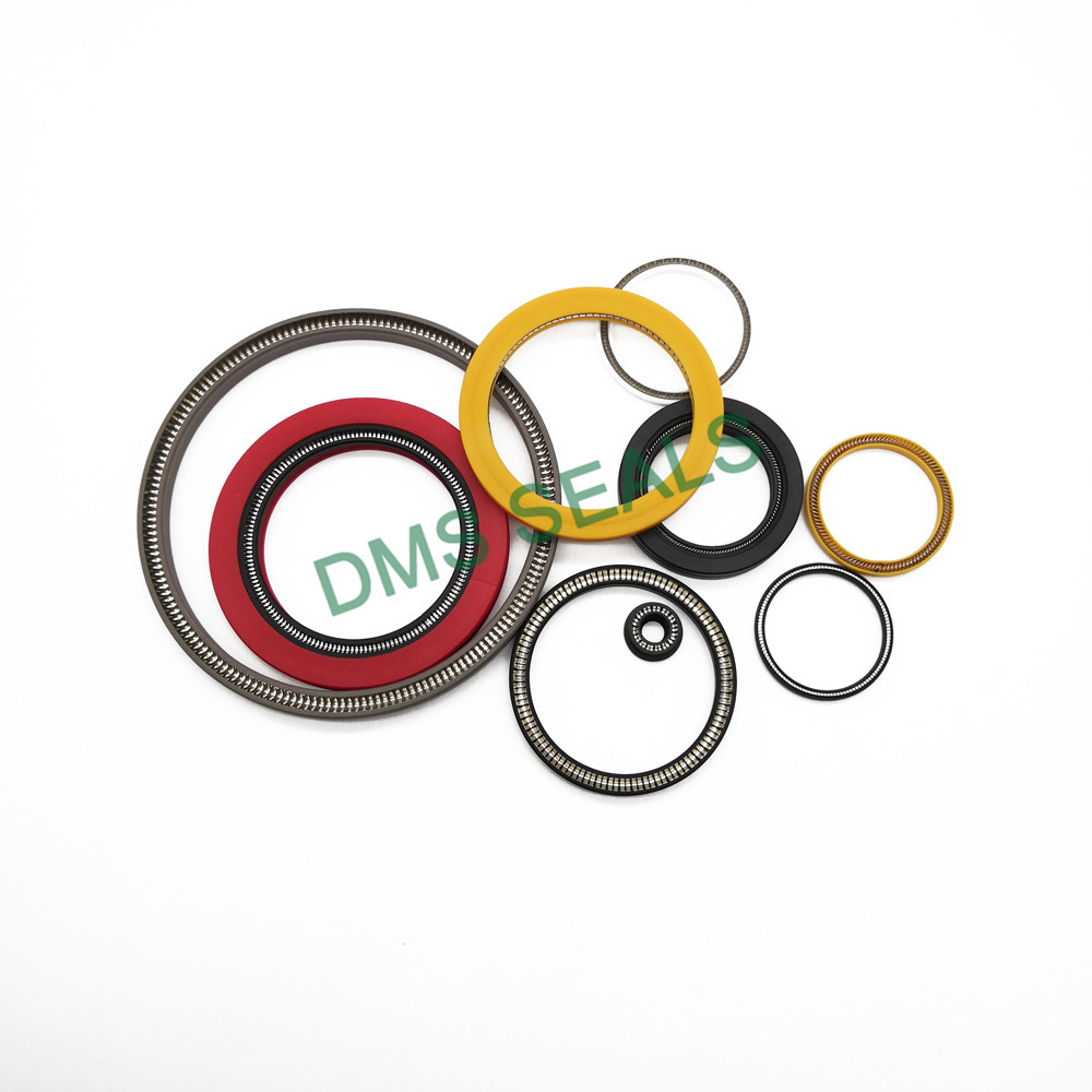 news-mechanical shaft seals springs Supply for reciprocating piston rod or piston single acting seal