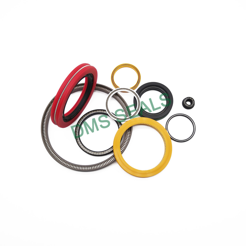 DMS Seal Manufacturer mechanical seal pot Suppliers for reciprocating piston rod or piston single acting seal-2